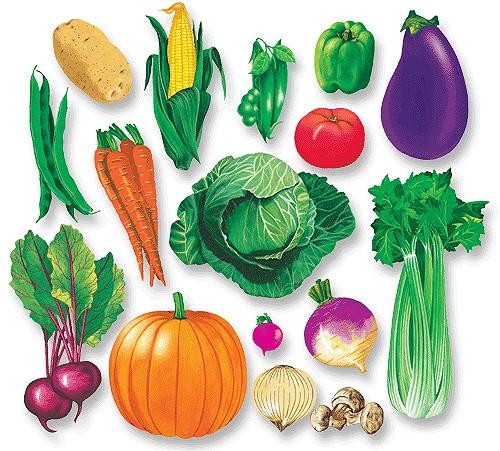 Блюда из овощей для детей от 6 месяцев до 1 года.